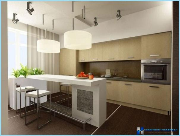 Design kitchen-living room in a private house