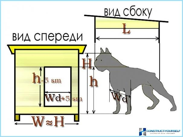 The dimensions of the box for Ovcharka, Central Asian shepherd and other dogs