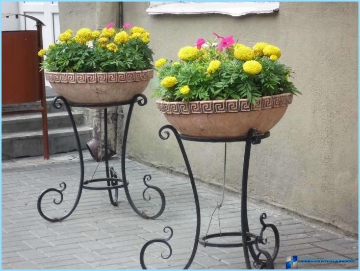 Metāla ziedu statīvi