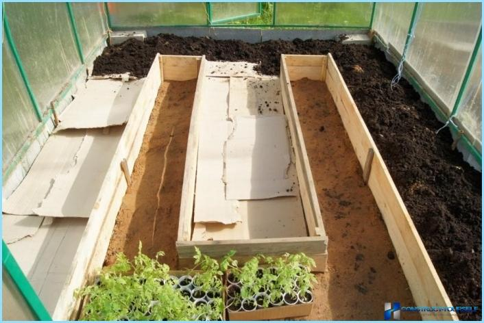 How to build a greenhouse inside