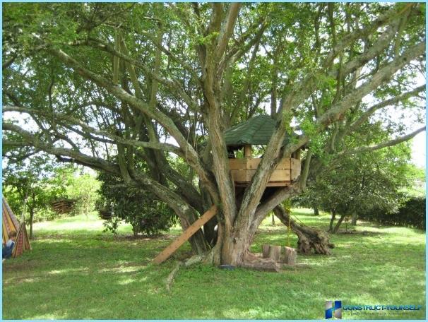 Come costruire una casa sull'albero