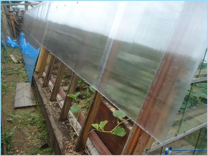 58 photo: how to cover an old greenhouse cellular polycarbonate