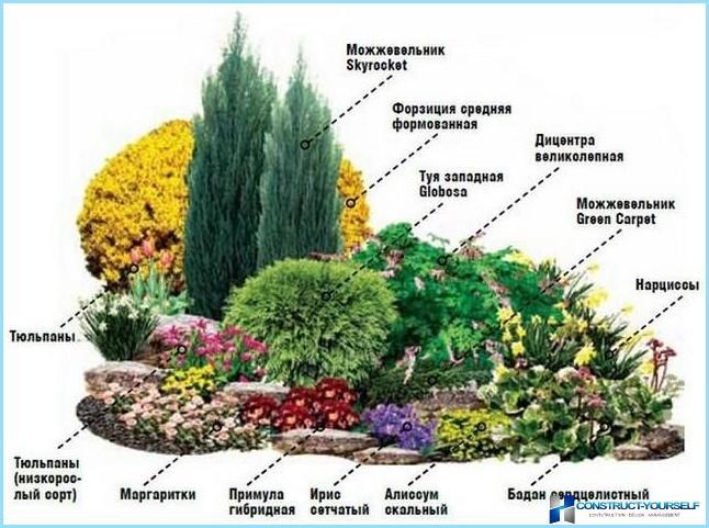 Mixborder nella progettazione del paesaggio