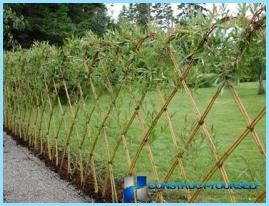 DIY-hedge i landet