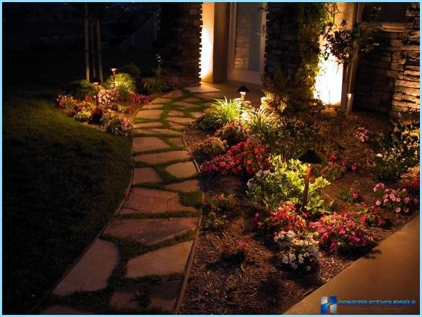The design of the front garden with his own hands