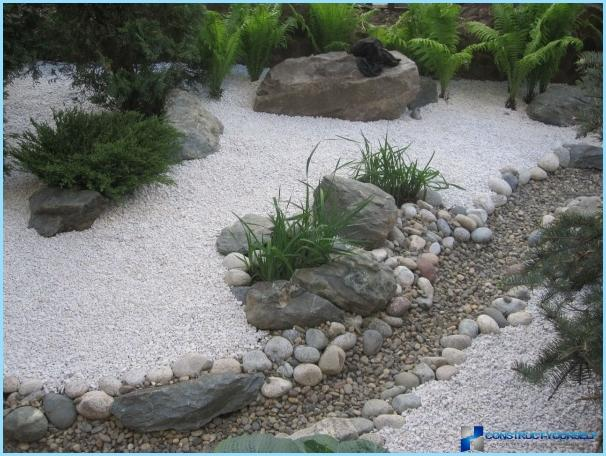 Landscaping a small suburban area