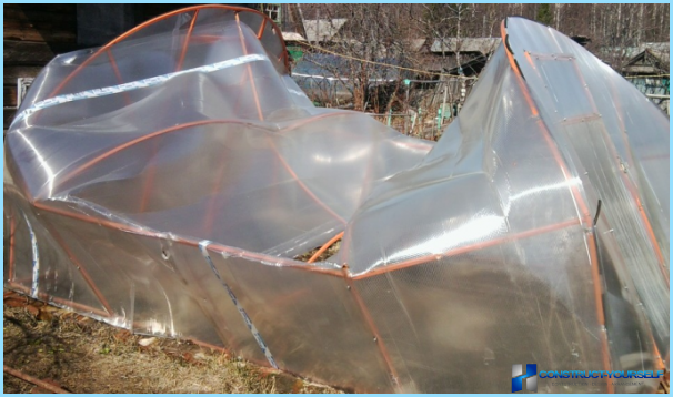 A greenhouse from cellular polycarbonate with their hands