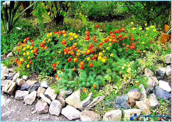 DIY blomsterbed