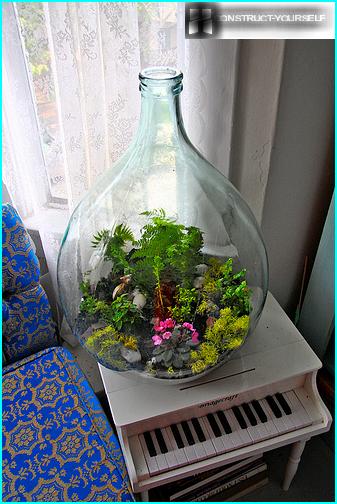 Garden in the flask