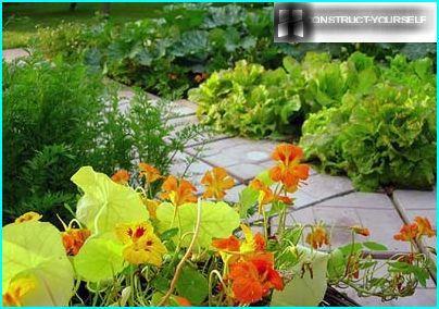 Dekoration af grøntsagsbed med blomster