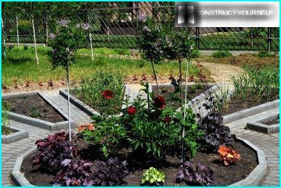 Zentrales Blumenbeet eines dekorativen Gartens
