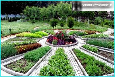 Dekoratīvs dārzs vasaras sākumā