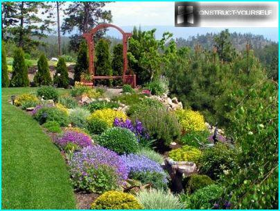 Jardin de rocaille au milieu de la pelouse