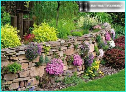 Rock puutarha kivinen seinä