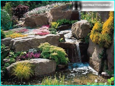 Jardin de rocaille avec cascade