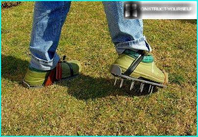 Aeration of the lawn