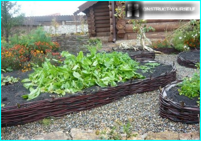 Blumentöpfe zum Selbermachen Blumen aus Reifen, Beton und anderen Materialien