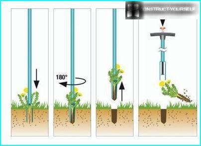 Extractor weeds