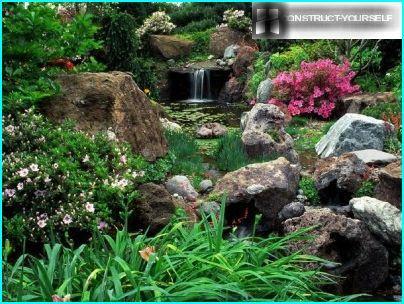 Rochers de forêt dans les jardins de rocaille