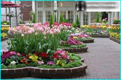 Immer blühende Blumenbeete