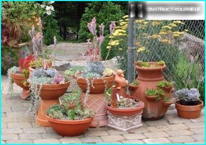 Composizioni di vasi di fiori