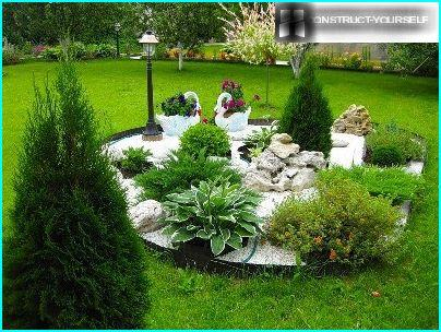 With the help of coniferous trees in the middle of the garden you can arrange a small rockery