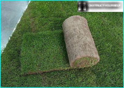 Universal græsplæne