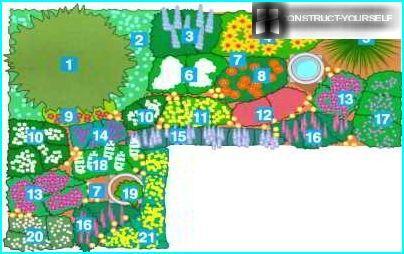 Layout af planter med forskellige blomstringsperioder