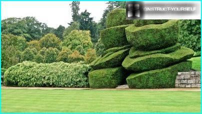 Modernes Topiary