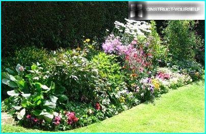 Daudzlīmeņu puķu dārzs saulainā vietā