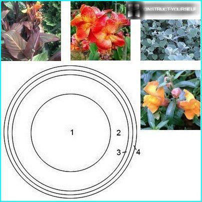 Vienkāršas apaļas puķu dobes dizaina shēma ar augu izvēli