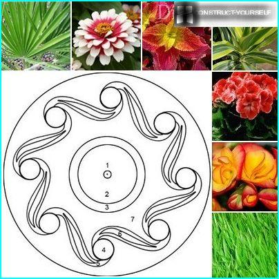 """Schematic design of flowerbeds """"Whimsical pattern"""" with a selection of plants"""