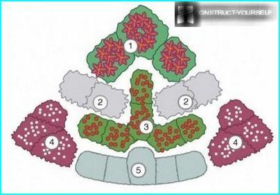 Scheme corner flower beds