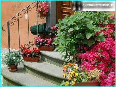 Haustürdekoration mit Behälterblumen
