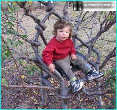 Arbosculpture Baum