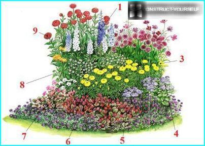 Perhosten kukkapenkkien järjestelmä