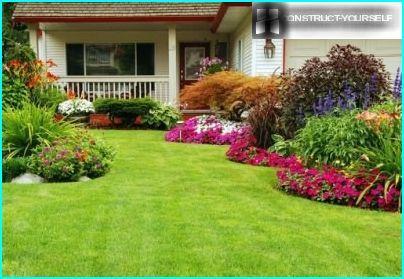 Græsplæne foran huset