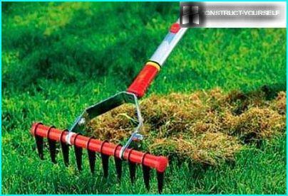 Picking af gammelt græs fra plænen