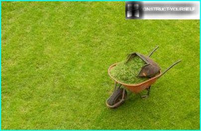 Fjernelse af græs fra græsplænen