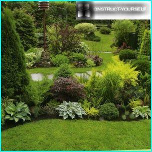 Zielona krawędź trawnika