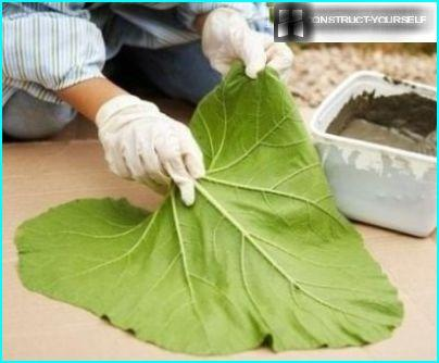 The leaves of burdock