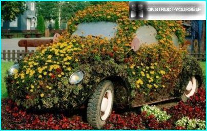 Auto fiore