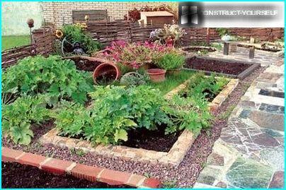Dekoratīvs dārzs - vietnes rotājums