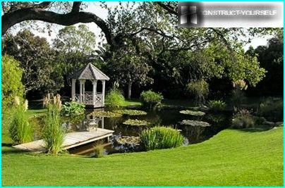 Gazebo by the pond