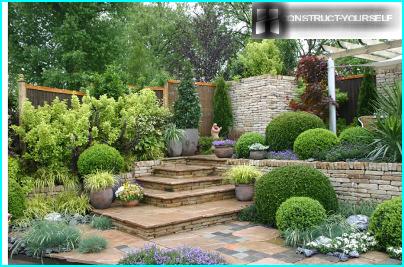 Europäischer Vorgarten