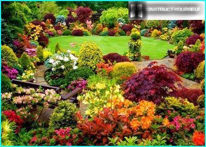 Flower garden in landscape style