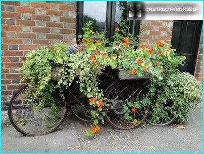 Les vélos comme parterres de fleurs
