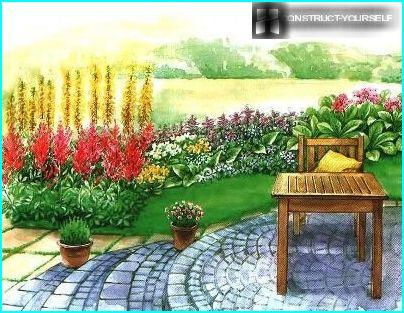 The choice of colors for flower beds