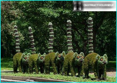 Sculpturen van planten