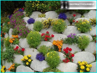 Katsaus puutarhatöiden kokonaisuuteen, joka suoritetaan maaliskuussa